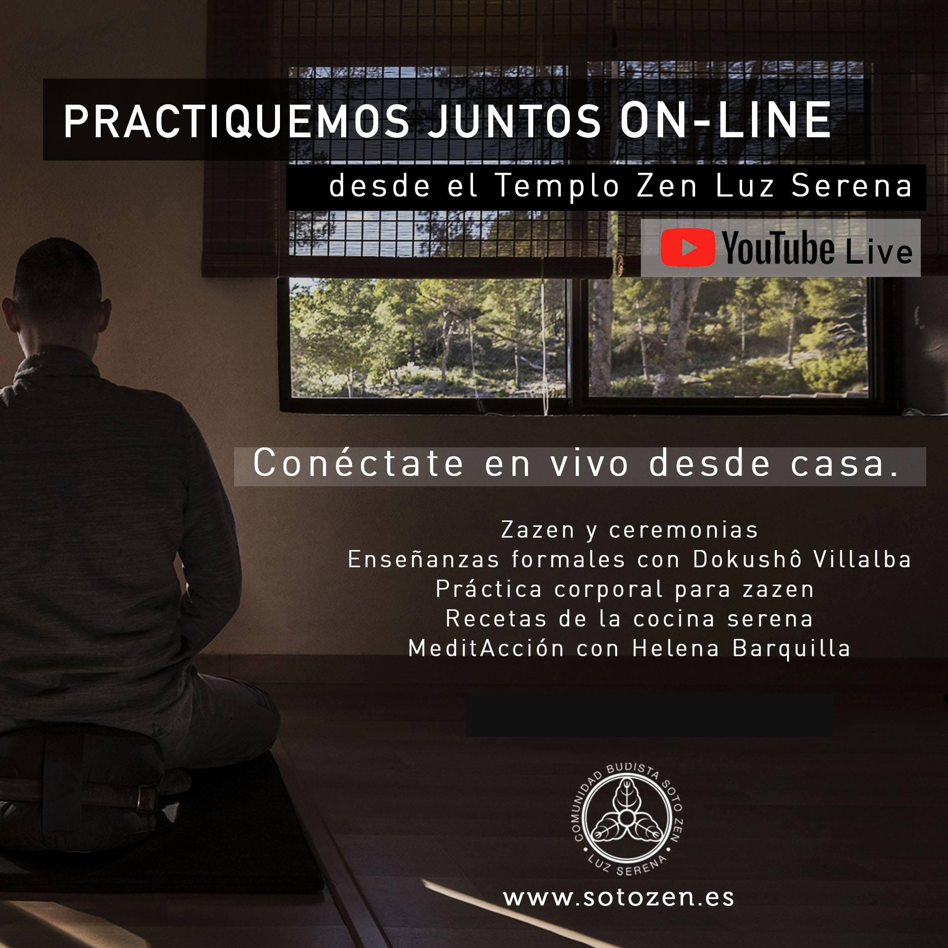 Practicando juntos On Line (13-17 abril)