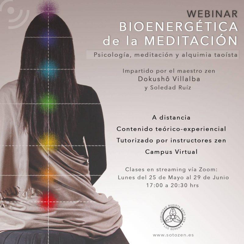 Equipo docente del Seminario «Bioenergética de la Meditación».